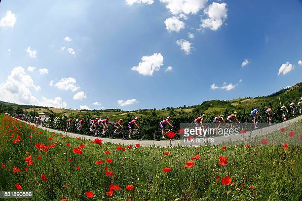 TOPSHOT The peloton rides during the 10th stage of 99th Giro d'Italia Tour of Italy from Campi Bisenzio to Sestola on May 17 2016 Luxembourg's Bob...