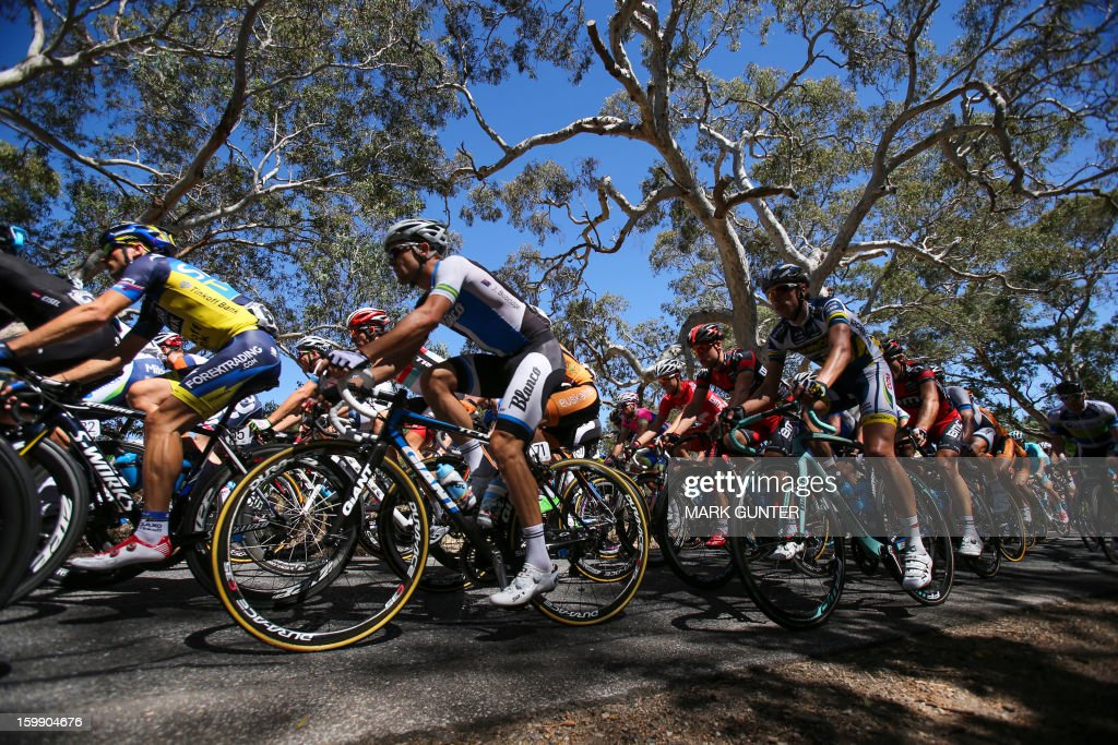 The peloton rides during the 116.5km stage two of the Tour Down Under in Adelaide on January 23, 2013. The six-stage Tour Down Under takes place from January 20 to 27. AFP PHOTO / Mark Gunter USE
