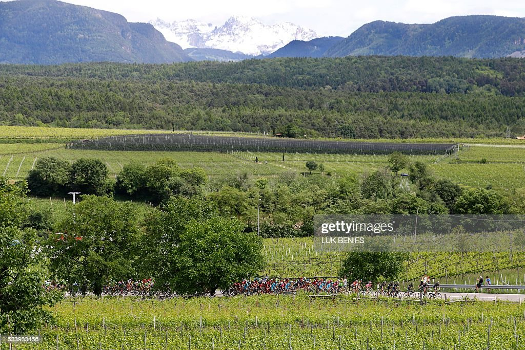 The peloton rides during the 16th stage of the 99th Giro d'Italia, Tour of Italy, from Bressanone / Brixen to Andalo on May 24, 2016. / AFP / VINCENZO
