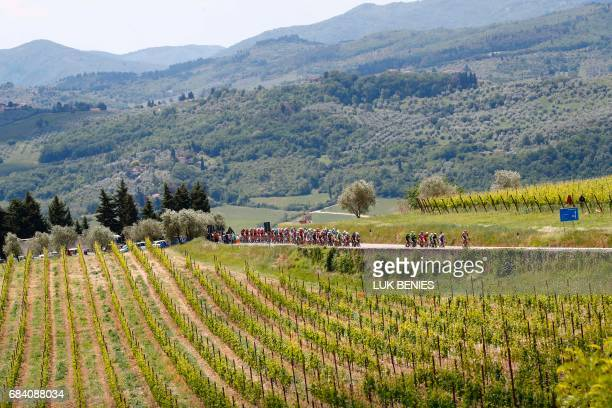 The peloton rides in the vineyards of Tuscany during the 11th stage of the 100th Giro d'Italia Tour of Italy cycling race from Florence to Bagno di...