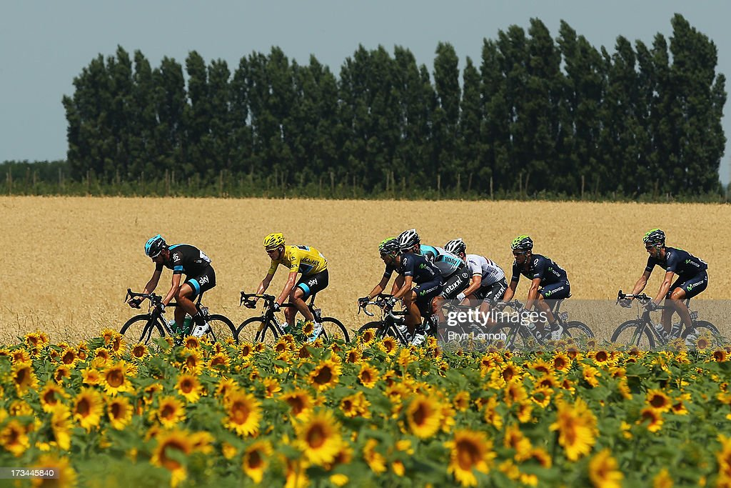 The peloton rides past a field of sunflowers during stage fifteen of the 2013 Tour de France, a 242.5KM road stage from Givors to Mont Ventoux, on July 14, 2013 in Givors, France.