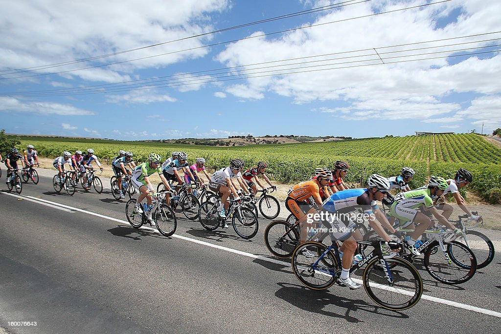 The peloton rides though McLaren Vale during stage five of the 2013 Tour Down Under on January 26, 2013 in Adelaide, Australia.
