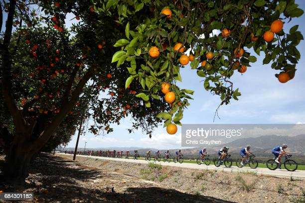 The peloton rides through the countryside during stage four of the AMGEN Tour of California from Santa Barbara to Santa Clarita on May 17 2017 in...