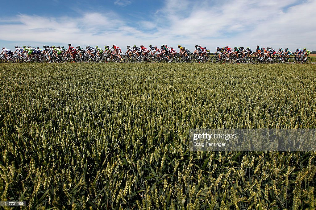 The peloton rides through wheat fields in the countryside during stage two of the 2012 Tour de France from Vise to Tournai on July 2, 2012 in Vise, Belgium.