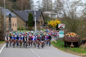 The peloton rides towards Bastogne during the 99th LiegeBastogneLiege cycle road race on April 21 2013 in Liege Belgium