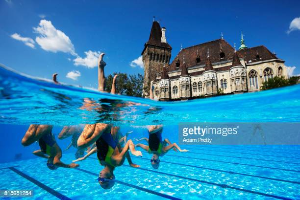 The People's Republic of Korea practice ahead of the Synchronised Swimming Team Technical preliminary round on day three of the Budapest 2017 FINA...
