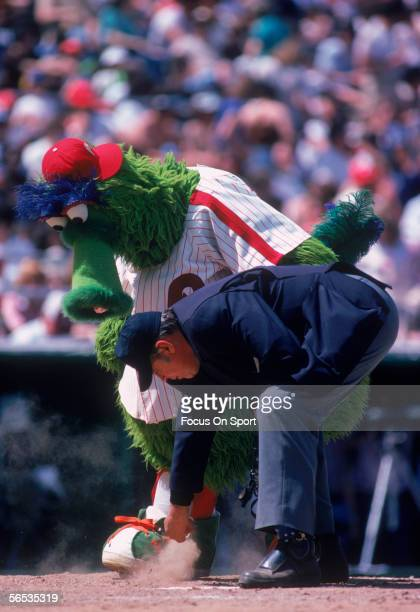The Philadelphia Phillies' mascott Philly Phanatic watches the umpire dust off home base during a game at Veterans Stadium circa the 1980's in...
