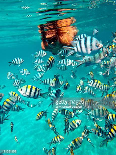 The Philippines, El Nido, woman swimming.