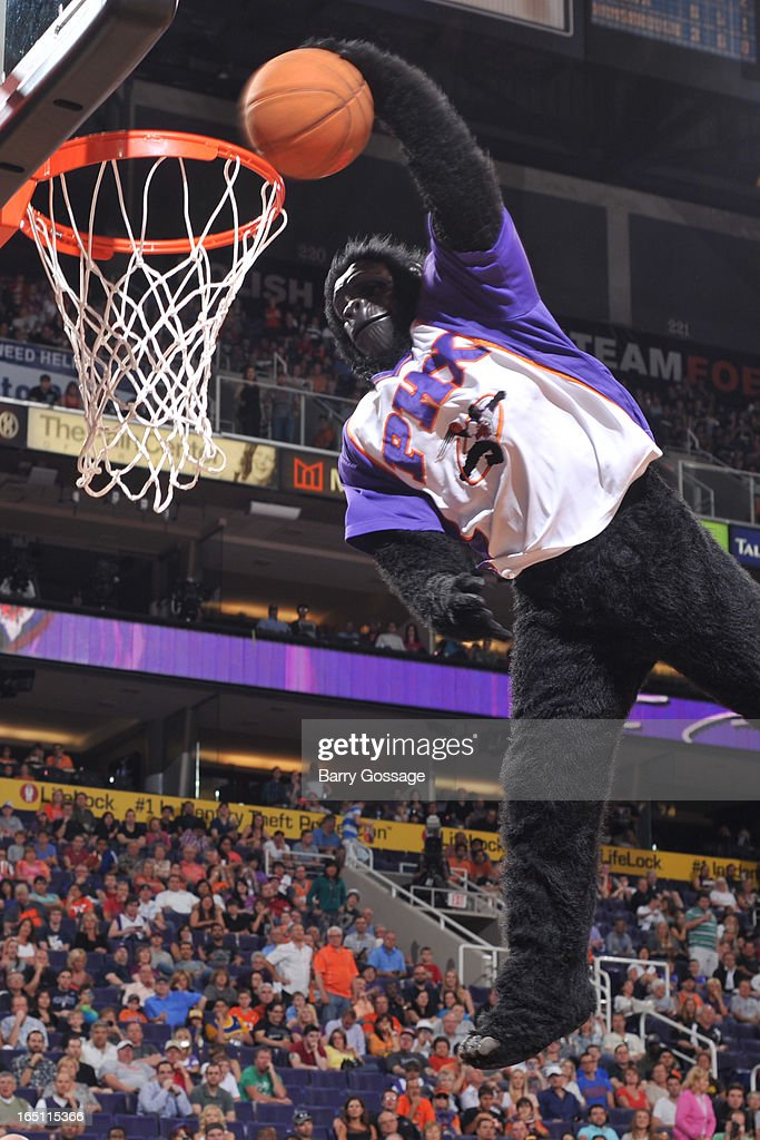 The Phoenix Suns Gorilla dunks the ball after the third period as the Suns host the Indiana Pacers on March 30, 2013 at U.S. Airways Center in Phoenix, Arizona.