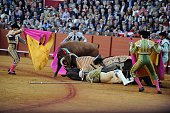 The 'picador' lies on the ground after being knocked down by the bull during a bullfight at the Maestranza bullring in Sevilla on April 15 2016 / AFP...