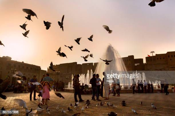 The piegons fly over the fountain in central square of the city and Shar Park along the Qaysari Bazaar which are located on the south of the citadel...