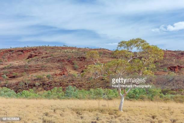 The Pilbara Hamersely Range