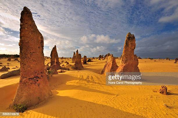 The pinnacles Desert Western Australia