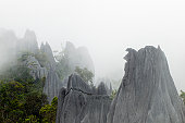 The Pinnacles limestone karst formations in fog high on slopes of Gunung Api.
