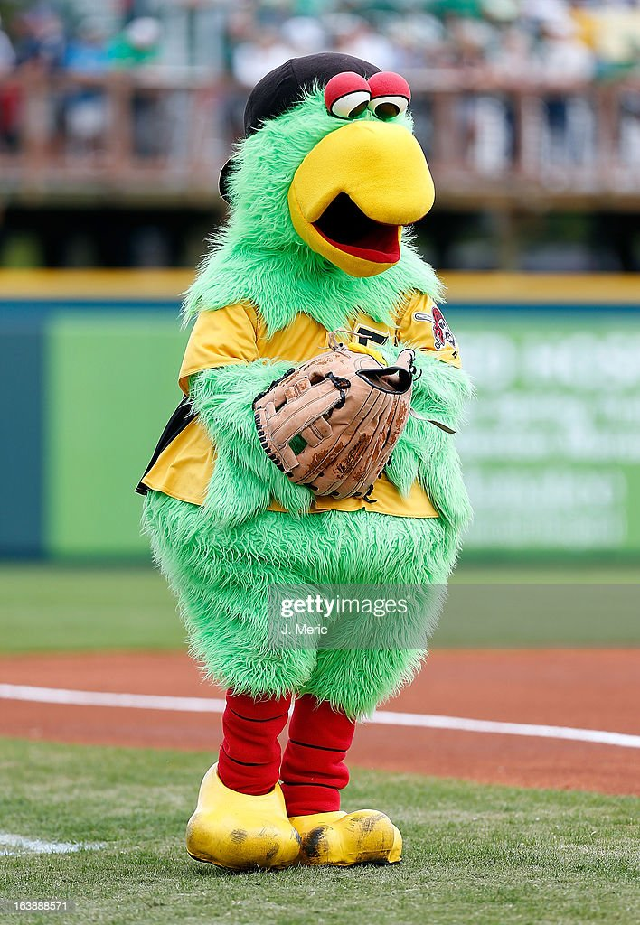 The Pirate Parrot, mascot of the Pittsburgh Pirates performs during a Grapefruit League Spring Training Game against the New York Yankees at McKechnie Field on March 17, 2013 in Bradenton, Florida.