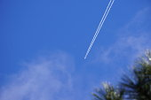 William's, Arizona sky in January with a plane flying overhead in a blue sky.