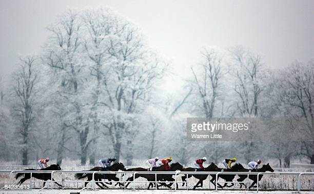 The Play Poker @ williamhillcom Handicap is run during the Williams Hill Race Day at Kempton Park Racecourse on January 10 2009 in SudburyOnThames...