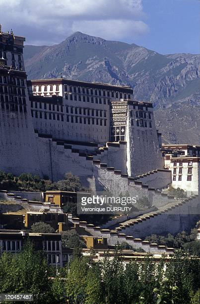 The potala palace Lhasa Tibet in Lhasa China
