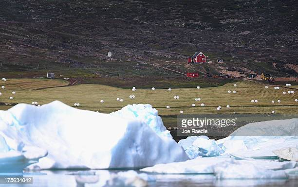 The potato and sheep farm of Arnaq Egede and Ferdinan is seen on July 31 2013 in Qaqortoq Greenland The farm the largest potato from in Greenland has...