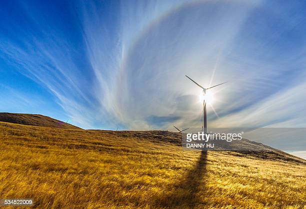 The power of sun and wind