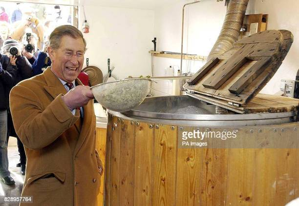 The Prince of Wales adds hopps to a vat at the village microbrewery during a visit to Newmarket Village Hesket Cumbria