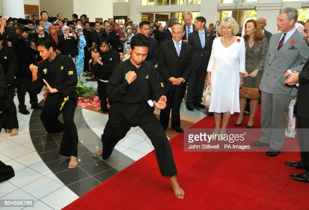 The Prince of Wales and the Duchess of Cornwall watch a demonstration of martial arts as they tour a craft fair at the University of Brunei