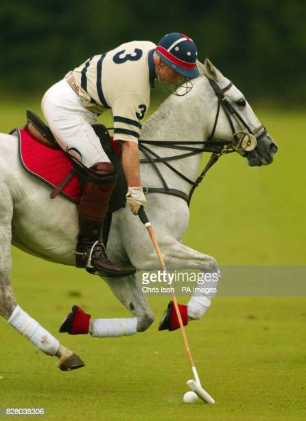 The Prince of Wales in action on the polo field where he played on the same side as his son Prince Harry The pair were playing for the Hunt Staff...