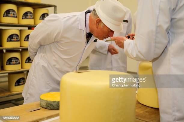 The Prince of Wales Patron of The Specialist Cheesemakers Association smells some cheese during his visit to Dewlay Cheesemakers on March 21 2017 in...