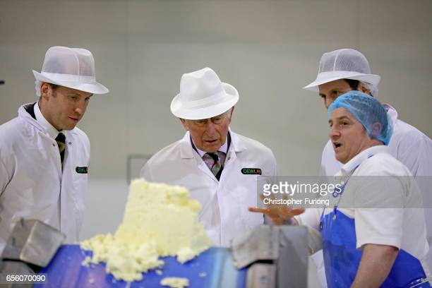 The Prince of Wales Patron of The Specialist Cheesemakers Association chats to workers during his visit to Dewlay Cheesemakers on March 21 2017 in...