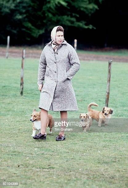 The Queen Walking Her Corgis In Windsor