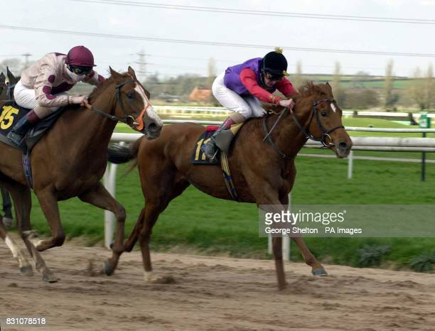 The Queen's horse Snow Bunting ridden by Steve Drowne on its way to finishing fifth in the Tips Online from Insideracingcouk Maiden Stakes Division...