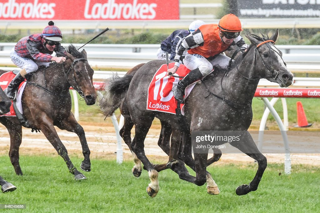 The Queen's Reward ridden by Daniel Stackhouse wins the Mornington Members Raceday Plate at Mornington Racecourse on September 13, 2017 in Mornington, Australia.