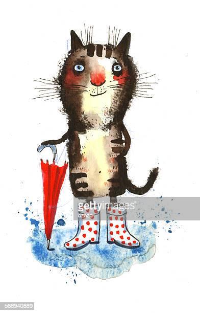 The Rainy Cat