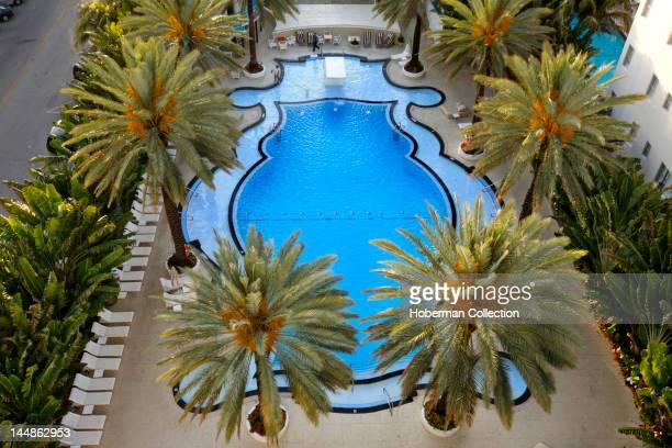 The Raleigh Hotel Swimming Pool Miami