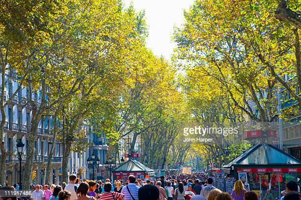 The Rambla, Barcelona, Catalonia, Spain