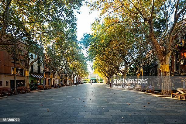 The Rambla (boulevard) of Figueres