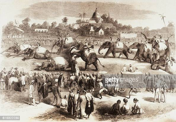 The Rangoon garrison take part in an elephant steeplchase in celebration of the Queen's birthday Rangoon India ca 1858