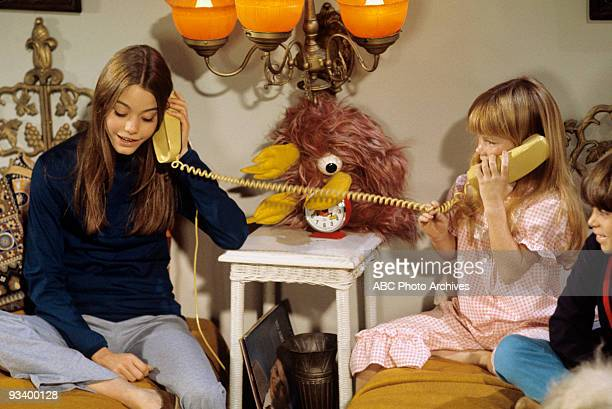 FAMILY 'The Red Woodloe Story' 1/1/71 Susan Dey Suzanne Crough