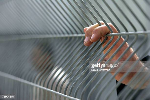 The relative of a Palestinian prisoner holds onto the fence of a waiting compound as she waits to be called to see her incarcerated family member...