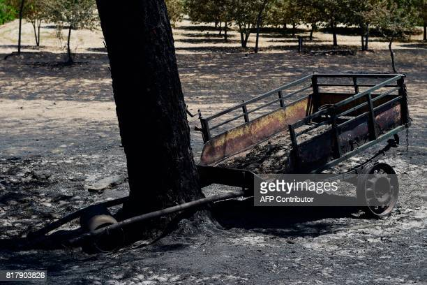 The remains of a trailor are pictured following a wildfire in the village of Vila Cha near Alijo on July 18 2017 A month after the deadliest forest...