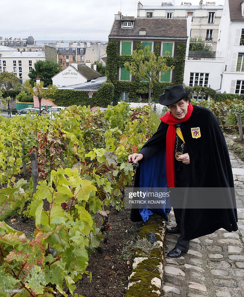The 'Republic of Montmartre President' Alain Coquard, wearing a red scarf, black cape and hat, the famous outfit of Aristide Bruant, immortalized by French artist Toulouse-Lautrec, poses on September 25, 2012 in the vineyard of Montmartre located next to the Sacre Coeur Basilica and the Lapin Agile cabaret. Founded on May 7, 1921, by famous artists as French illustrator Francisque Poulbot who lived in Montmartre, the Republic of Montmartre organizes charity programs and cultural actions.