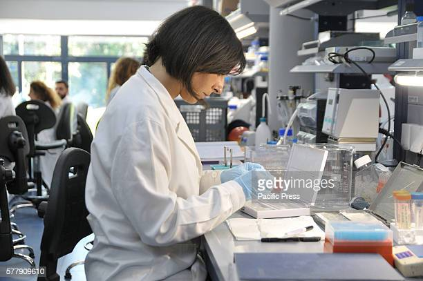 TIGEM POZZUOLI NAPLES ITALY The researchers at work during the conference at the Telethon Institute of Genetics and Medicine of Pozzuoli Premier...