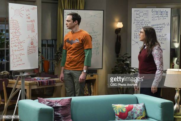 'The Retraction Reaction' Pictured Sheldon Cooper and Amy Farrah Fowler Leonard angers the university and the entire physics community after he gives...