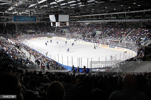 The Ricoh Coliseum during AHL action between the Rochester Americans and Toronto Marlies on October 13 2012 in Toronto Ontario Canada