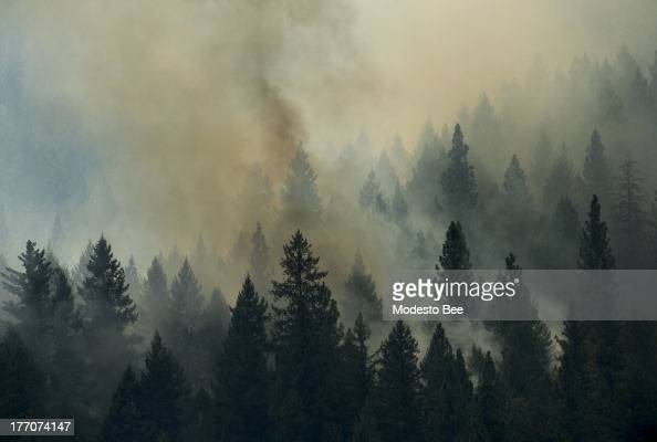 The Rim Fire burns in the Stanislaus National Forest in California Tuesday August 20 2013
