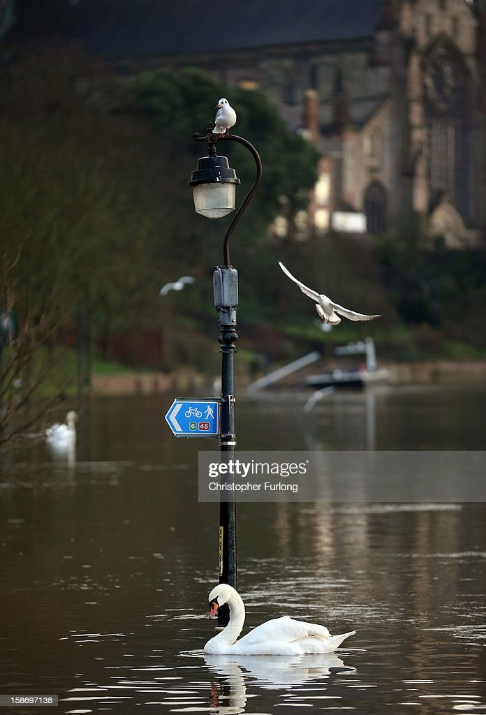 The River Severn breaks its banks in the city of Worcester after heavy rainfall on December 24, 2012 in Worcester, England. Forecasters have predicted more rain to sweep across the country causing flash flooding over the coming days. The South West of England has been badly affected causing major disruption to the rail network delaying journeys for people making their way home for Christmas.