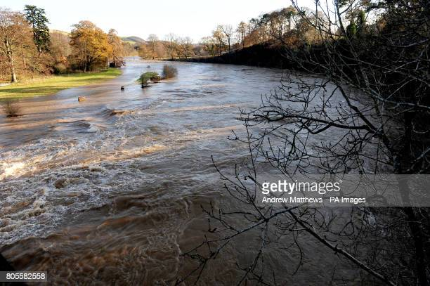 The river Tweed at Middle Pavillion near Melrose in the Scottish borders