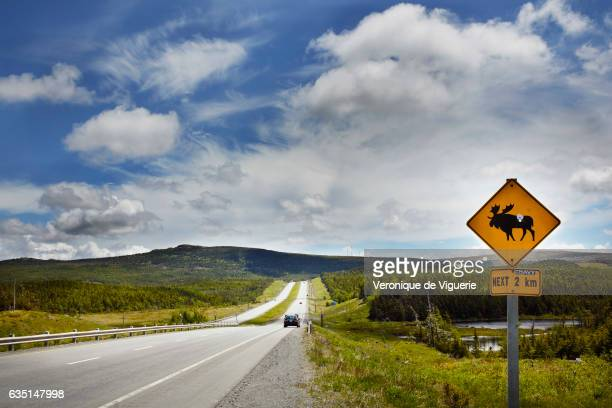 The road from Bonavista Bay to Saint John's used by the truck carrying the iceberg water from Ed Kean's vessel to the Iceberg Vodka factory As more...