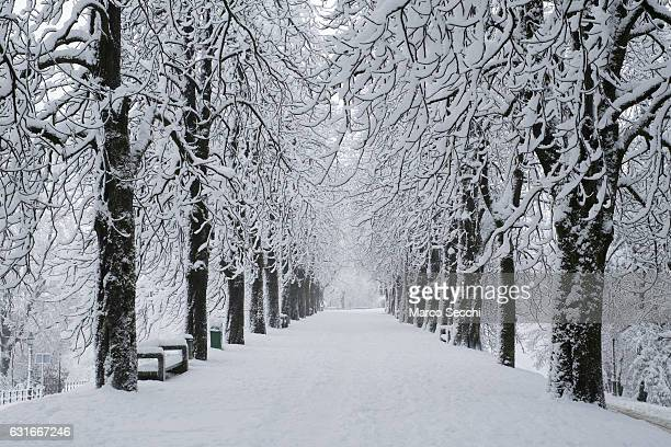 The road leading to the Castle grounds is seen on January 14 2017 in Ljubljana Slovenia Most of Slovenia was covered by heavy snowfalls for the first...