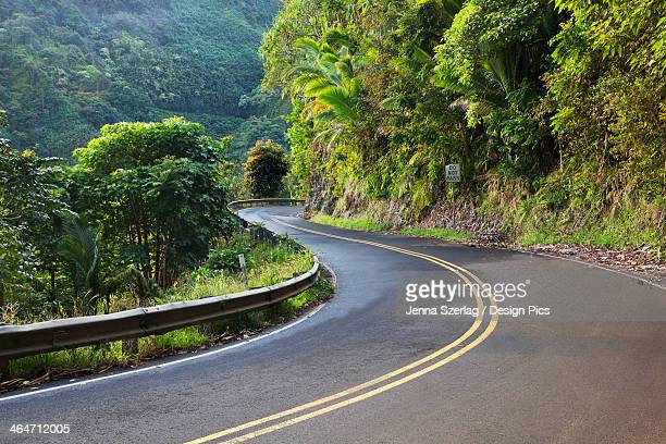 The Road To Hana With Green Foliage